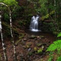 Strickland Falls