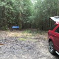Carpark at Adamsons Falls Track