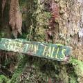 Creekton Falls signage