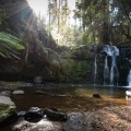 Sunburst at Lilydale Falls