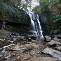 Enjoying Lilydale Falls