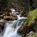 one of the many small waterfalls on Burnies Creek