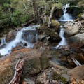 Delightful Cascades