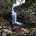 Upper Liffey Falls