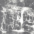 Princess Falls, Lynchford