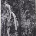Blairgowie Falls, Mt. Direction