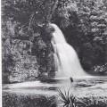 Sir John Falls, Gordon River, West Coast Tasmania