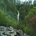 Willies Falls from the distance