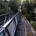 Bridges replaced!