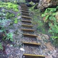 Rope ladder to Middle Falls Plateau