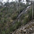 Contextual view of the falls from the scree slope