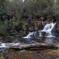 A small waterfall at the Rock Pools