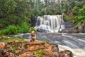 Which Waterfalls can you take your dog to in Tasmania?