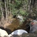 Eurydice Creek